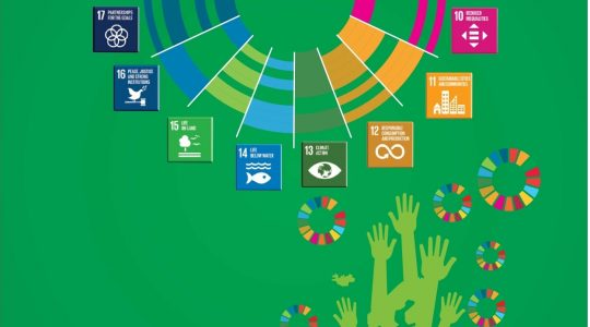 Citizens' Voices on Voluntary National Review & Status of SDGs in Pakistan 2019