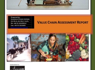 Value Chain Assessment Report